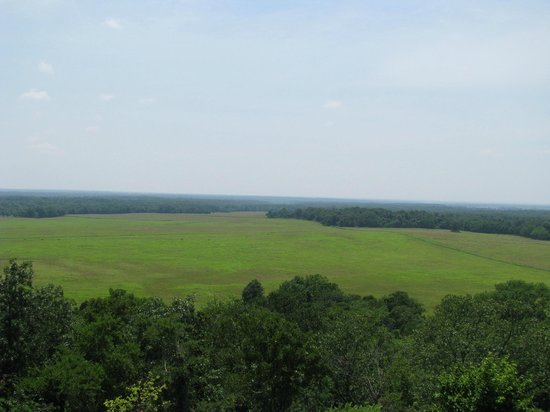 Pea Ridge National Military Park : Overlookig the battlefield
