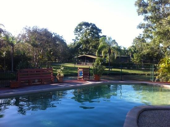 Whalecove Resort: pool