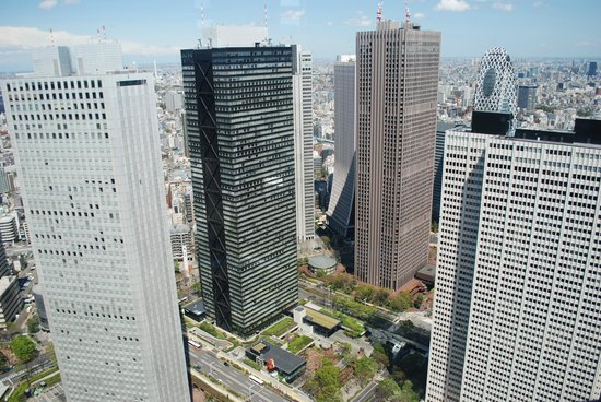 Shinjuku, Japan: View from TMG