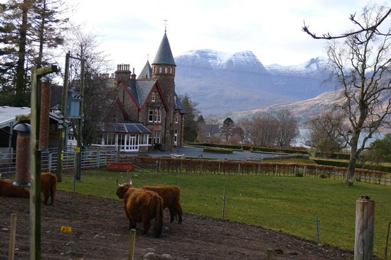 The Torridon Inn : A picture of the Hotel from the Inn