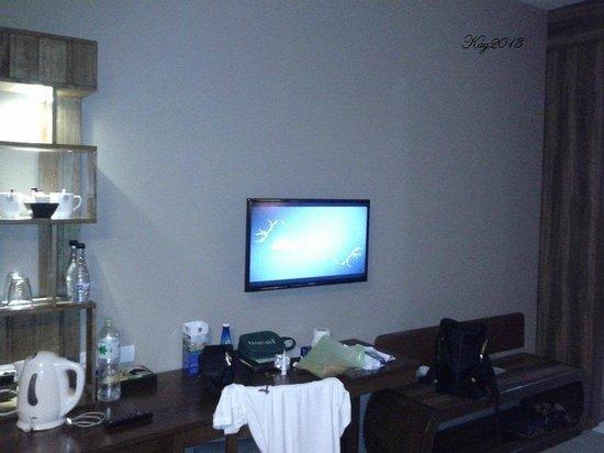 Grand Howard Hotel : Flatscreen tv