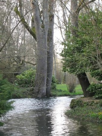 Le Moulin des Charmes : the stream that flows alongside the house