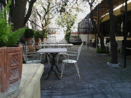 Hotel Villa Margherita : Giardino