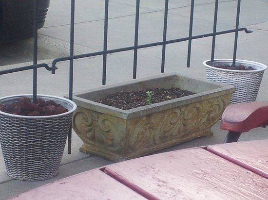 Bistro 150: Very Uninviting Patio