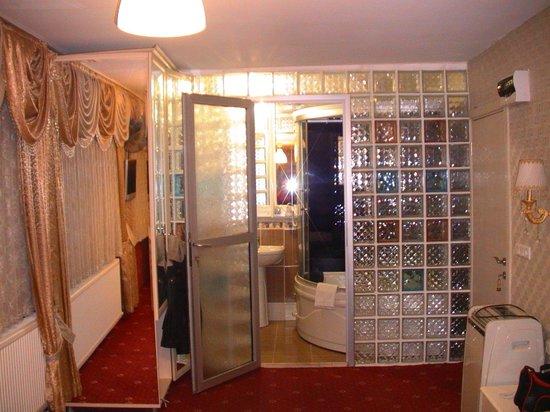 Sultan's Eye Comfort Hotel: Вид на туалет