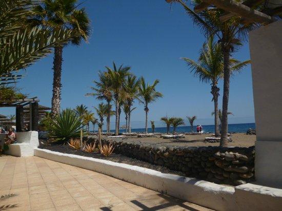 VIK Hotel San Antonio: The beach