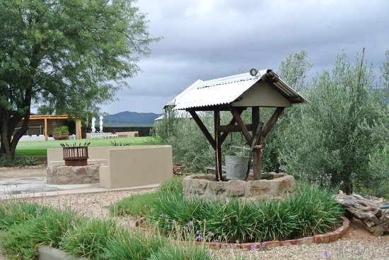 Surval Boutique Olive Estate: Part of the grounds