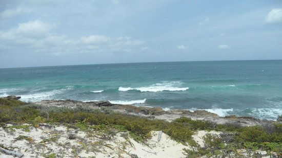 Isla Contoy: wonderful day out