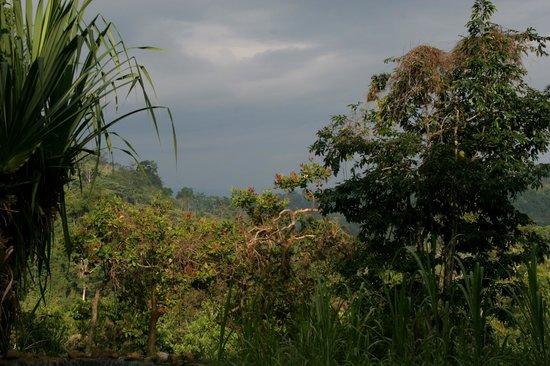 Bolita Hostel: View from Bolita