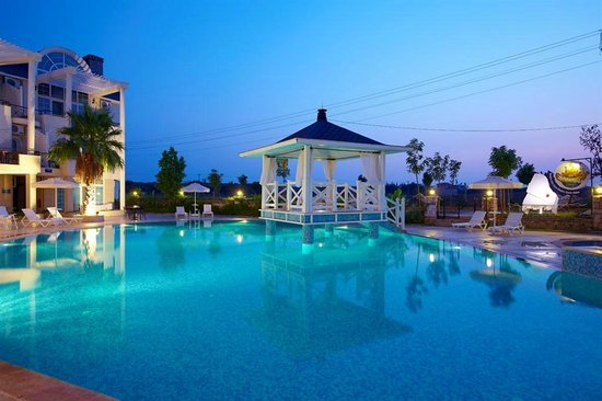 Seahorse Deluxe Hotel: VIP ON THE POOL