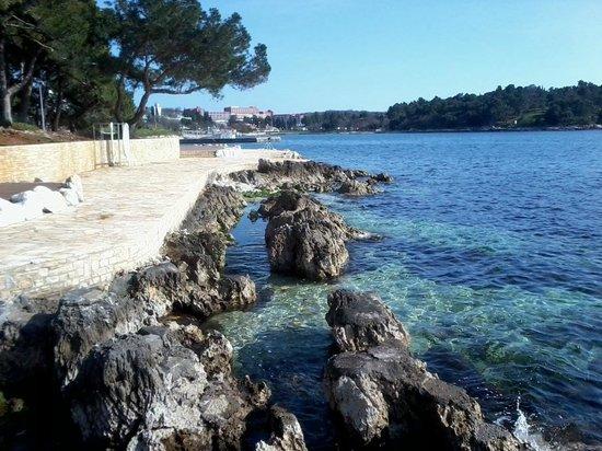 Hotel Laguna Parentium: spiaggia hotel Parentium