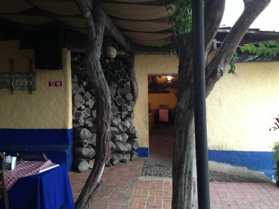 Mirador Tiquicia: Very cool trees used as beams
