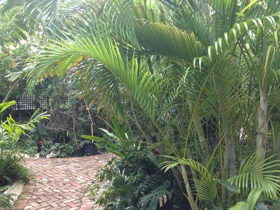 Papa's Hideaway : Plants everywhere