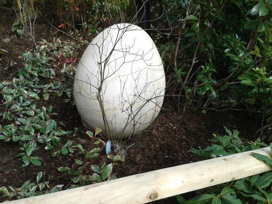 Dino Park: Dinosaur egg!