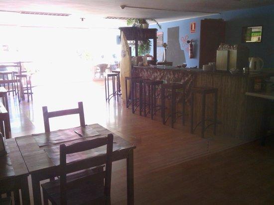 Acd Tenerife Surf House: bar cafeteria