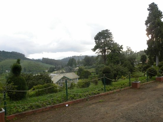Hotel Mayura Sudarshan Ooty: View from Hotel
