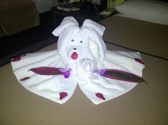 Volcano Lodge & Springs : Towel dog, courtesy of the maid!