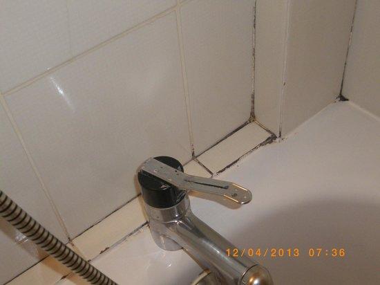 Hotel Restaurant Le Pont Bernet: baignoire sale
