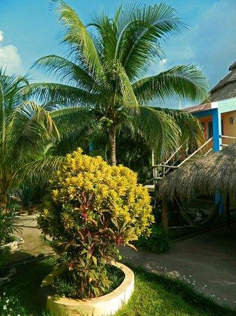Village Tan Kah: Grounds.