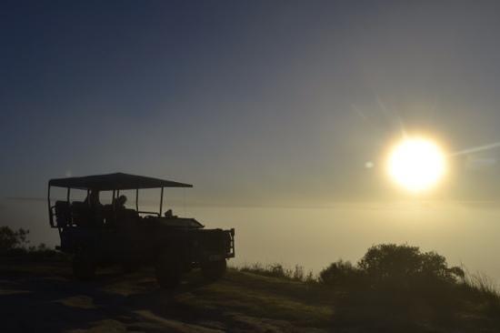 Woodbury Lodge: sunrise safari