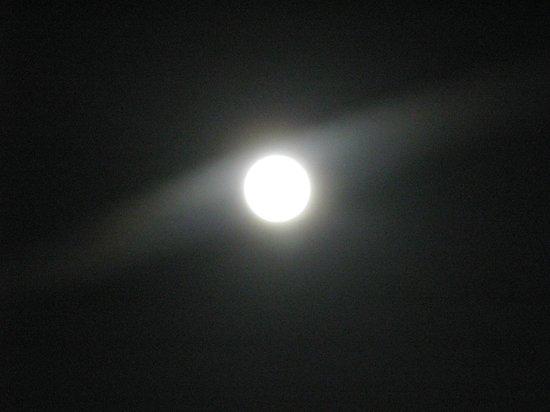 Hotel Palatium Mari: tu luna,luna tu....luna caprese.......ca faje sunnà  'e  'nammurate....