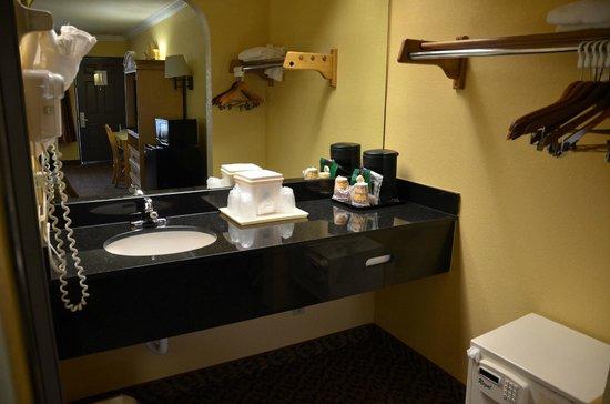 Americas Best Value Inn: Wastafel op kamer