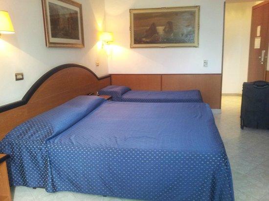 Hotel Sonya: The room