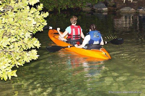 Sea Thru Kayaks VI: Really epic tour!