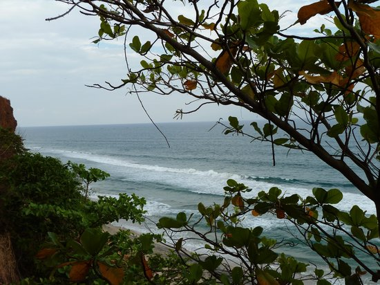 Varkala SeaShore Beach Resort: in the garden, see view from the cliff