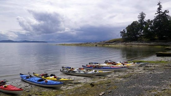 Sealegs Kayaking & Marine Adventures : Gulf Island multi-day adventure
