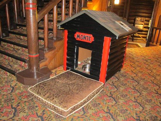Fairmont Le Chateau Montebello: Niche de Monte, le chien de l'hôtel