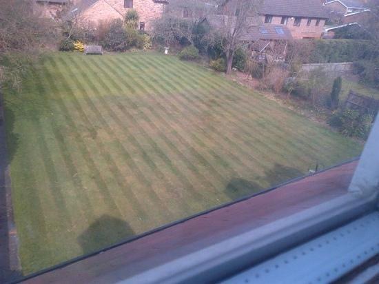 Ditton Lodge Hotel: garden