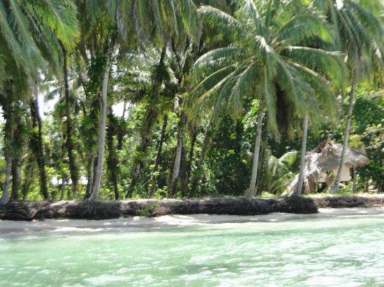 Eclypse de Mar: Zapatilla Keys
