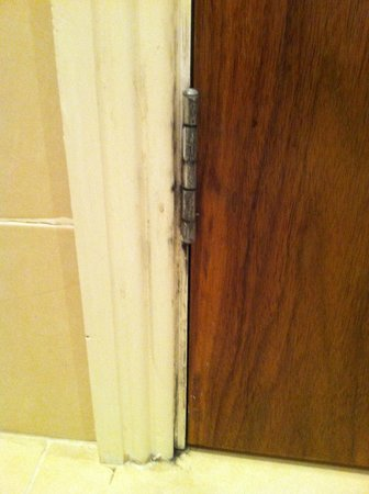 Sligo Park Hotel : Marks  around door
