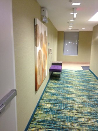 SpringHill Suites Philadelphia Airport/Ridley Park: hotel hallway