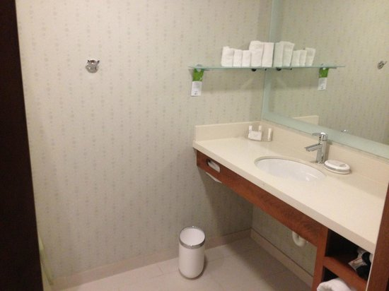 SpringHill Suites Philadelphia Airport/Ridley Park : bathroom