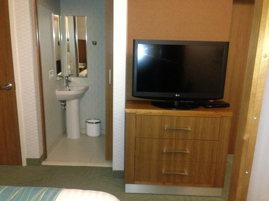 SpringHill Suites Philadelphia Airport/Ridley Park : tv in room