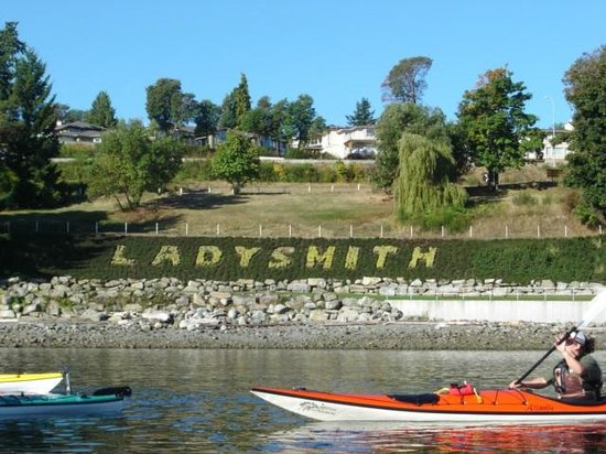 Sealegs Kayaking & Marine Adventures : Transfer Beach, Ladysmith BC