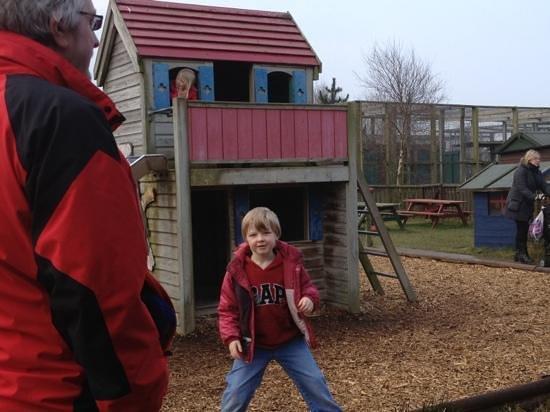 Animalarium at Borth: play area