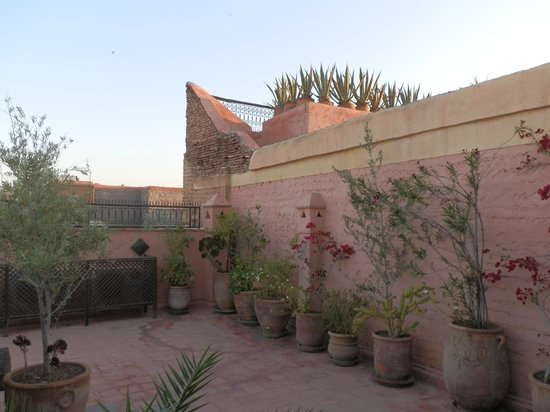 Darhani: pretty roof terrace