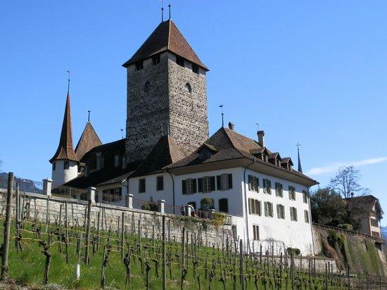 Spiez Castle: Spiez - Castle