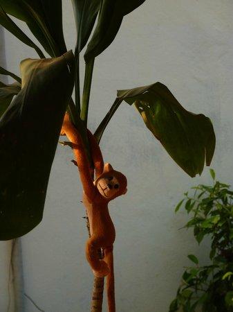 Monkey Biziness Cafe - Koh Lanta : Monkey in Monkey Biziness