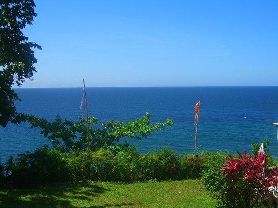 Casa Roca Inn: The view