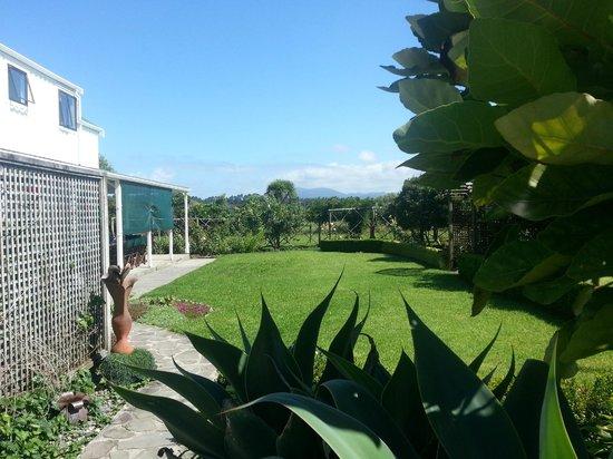 Jacaranda Lodge: Back of house