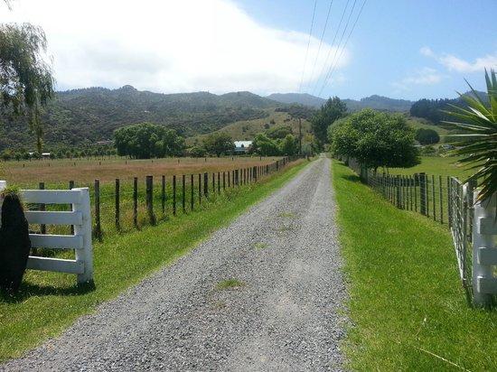 Jacaranda Lodge: Entry looking toward main road