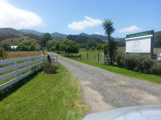 Jacaranda Lodge: Entrance at the main road
