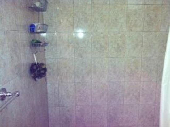 Moonlight Bay Hostel : Shower, very clean and new