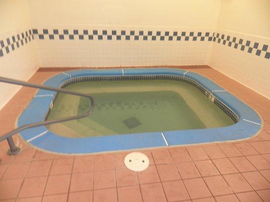 Fairfield Inn St. Louis Fenton: Whirlpool