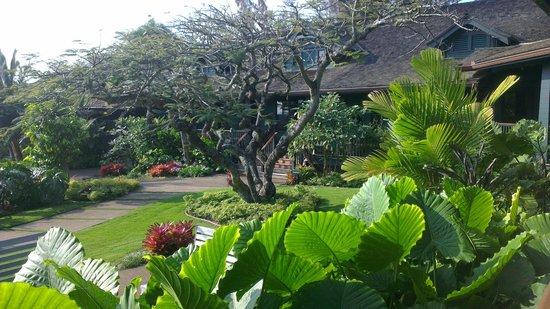 Lumeria Maui Retreat: Grounds