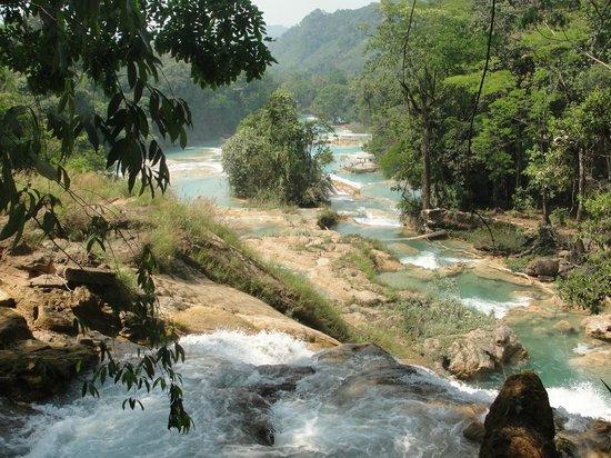 Caidas en agua azul picture of cascadas de agua azul for Cascadas de agua